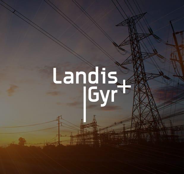 Landis Gyr Mov 233 O